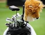 golflion